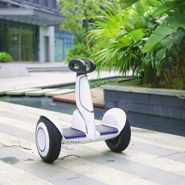 A Chinese Company Who Appears to Be the Winner of World's Micromobility